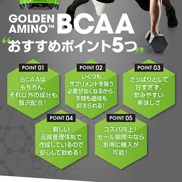 ファインプロ GOLDEN AMINO BCAA 55杯分 オススメポイント5つ